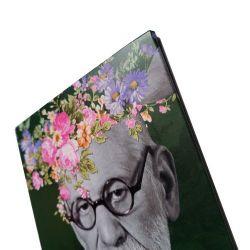 Magneto As Flores de Freud